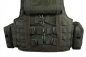 Preview: Warrior Assault Systems Raptor Plate Carrier G36 Oliv