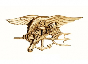 US NAVY SEALS PIN