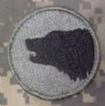 "104th Infantry Division "" TIMBERWOLVES "" ACU patch"