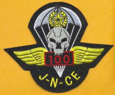 19th Special Forces Airborne 100 Jump patch