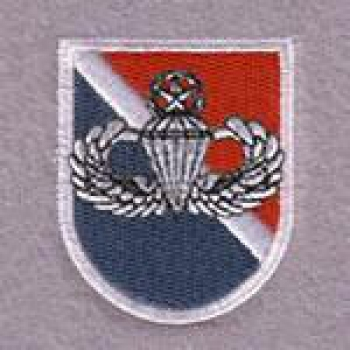 11th SFG Beret Flash Master Airborne Wings