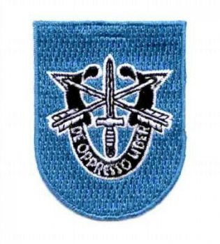 19th SpecForce Group SFG Patch Flash