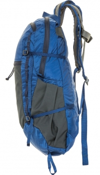 Mystery Ranch In and Out Daypack 19 L Coyote
