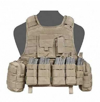 Warrior Raptor Plate Carrier DA 5.56 G36 Coyote