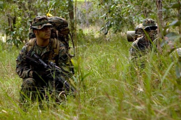 Us Marine Corps Usmc Iguana Bed Net Pop Up Tent Insect