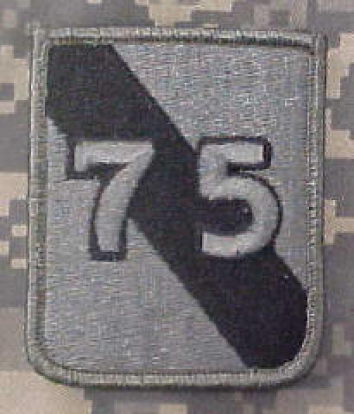 75th Infantry Division ACU Patch - foliage green