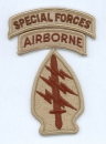 10th Special Forces Airborne DCU patch